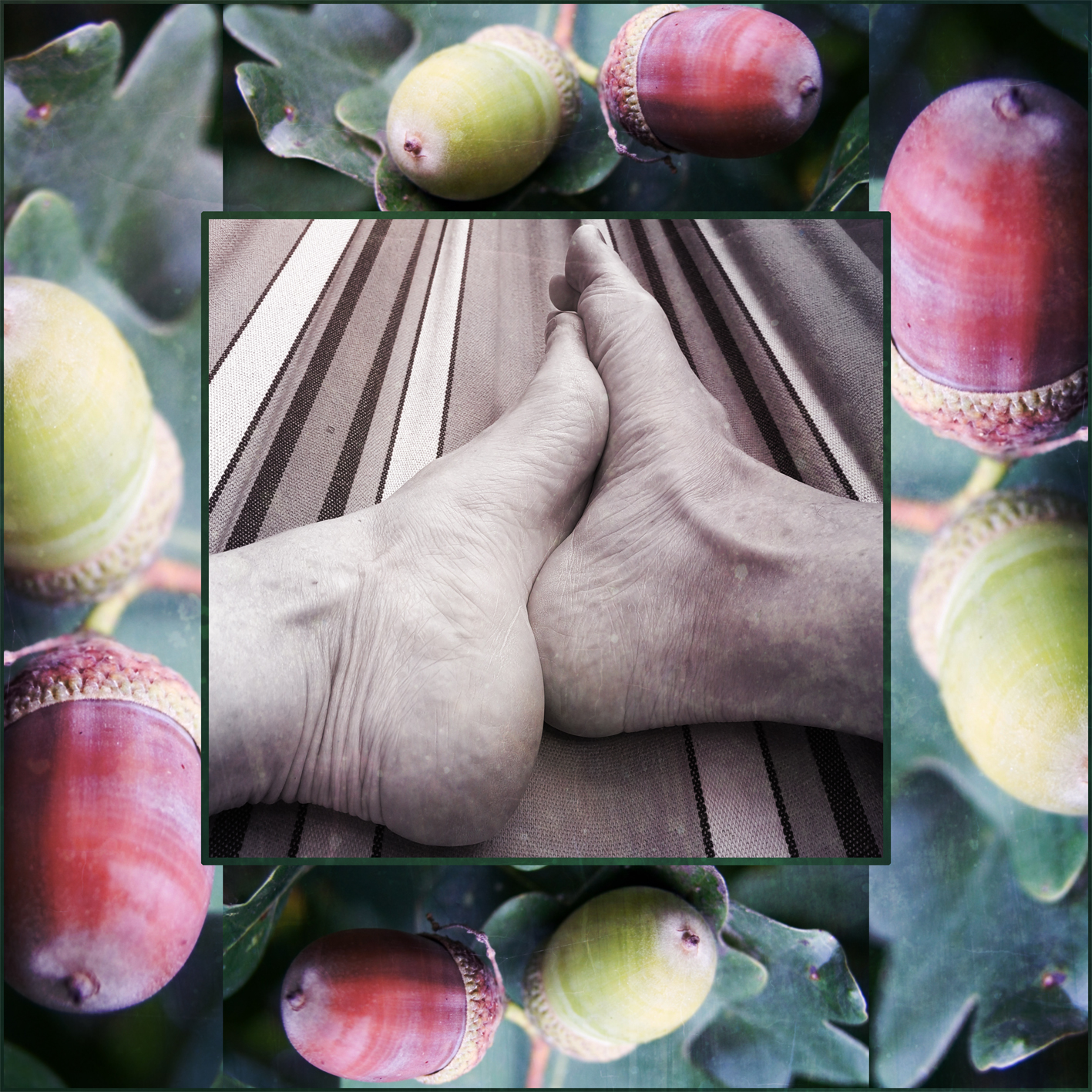 Photo collage of nude feet and fallen acorns